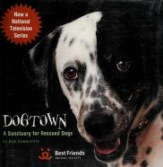 Cover of: Dogtown | Bob Somerville